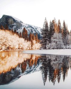 Yosemite in December @zeisenhauer
