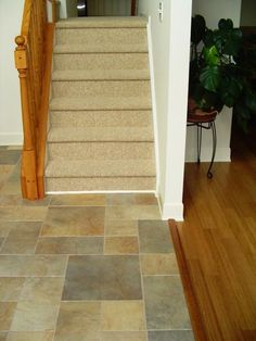 hardwood and tile transitions | ... to put mortar between wood and backerboard on a mixed wood/tile floor