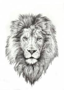 Lion tattoos hold different meanings. Lions are known to be proud and courageous creatures. So if you feel that you carry those same qualities in you, a lion tattoo would be an excellent match Leo Lion Tattoos, Mens Lion Tattoo, Tattoos Skull, Animal Tattoos, Hand Tattoos, Horse Tattoos, Leo Tattoo Designs, Tattoo Design Drawings, Trendy Tattoos