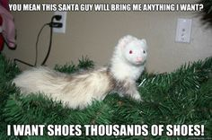 I can hear Barney saying this! He loves to take off and hide shoes and remotes!