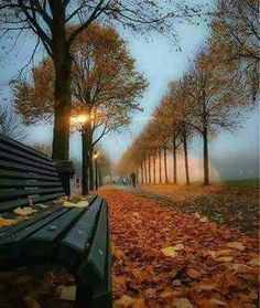 Gorgeous moment in Barcelona, Spain. Photography by Landscape Photography, Nature Photography, Photography Magazine, Autumn Scenery, Parcs, Beautiful Landscapes, Cool Pictures, Party Pictures, Beautiful Places