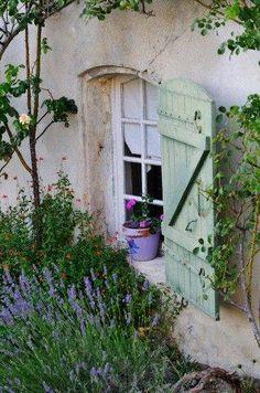 shutters <3