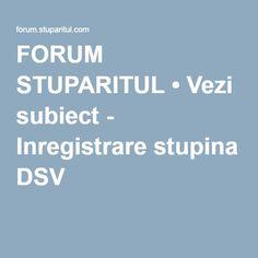FORUM STUPARITUL • Vezi subiect - Inregistrare stupina DSV Beekeeping