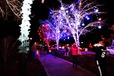 2015 Light the Park