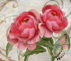 Peonies Art - Apricot Peonies  by Mindy Sommers