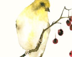 A Fine Art print from my original watercolor painting of a little light blue and rose bird.  Printed on heavyweight and acid-free Hahnemuehle Torchon paper. The paper has quite a rough surface which gives a lovely contrast to the tenderness of the bird. The print measures 4.7 x 6.7 inches (12 x 17 cm), portrait format.  Lightly signed and dated on the front. Unframed.  All drawings are shipped, enveloped in soft tissue paper, in a sturdy cardboard envelope with extra cardboard backing…