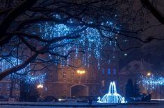 Szczecin Poland, Louvre, Mansions, House Styles, City, Building, Travel, Viajes, Manor Houses