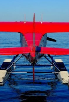 Red sea plane Airplane Flying, Flying Boat, Aviation Humor, Aviation Art, Fighter Pilot, Fighter Jets, Amphibious Aircraft, Bush Plane, Plane Photos