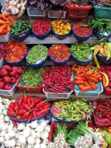 Growing Hot Peppers #vegetable #gardening