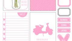 Summer Pink Journaling Elements - Free Printable Pdf Download