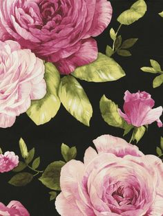 Black Rose Bloom Vine Wallpaper By Seabrook, Traditional Wallpaper Spring Garden Shop Wallcovering By Collection - Interior Design Victorian Wallpaper, Damask Wallpaper, Rose Wallpaper, Black Wallpaper, Wallpaper Designs, Wallpaper Samples, Black Background Painting, Discount Wallpaper, Cabbage Roses