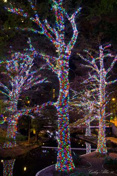 Christmas in Riverwalk, San Antonio, Texas
