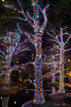 Christmas in Riverwalk, San Antonio, Texas