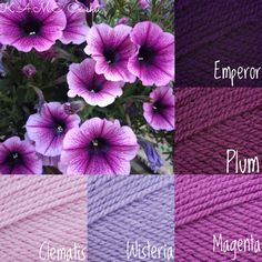 Yarn Color Combinations, Color Schemes Colour Palettes, Colour Pallette, Beautiful Color Combinations, Colours That Go Together, Color Me Mine, Yarn Inspiration, Creative Colour, Design Seeds