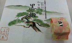 加古川市 三河屋の黒松 餡の優しい味が口に広がります