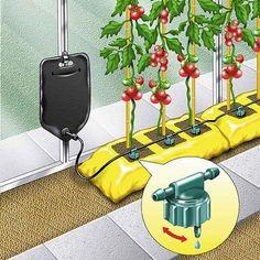 Que l'on soit en appartement ou en maison, il est possible de cultiver des légumes et des herbes aromatiques dans des pots. Pour quelques herbes fraîches ou bien pour un véritable potager sur son balcon, la culture en pot vous séduira par sa simplicité et sa mobilité ! La culture en pot : avantages et […]