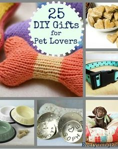 diy gift for pets ~ dog treats, dog bed, pet portrait...