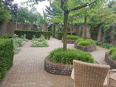 Betegelde doch groene tuin Garden, Plants, Garten, Lawn And Garden, Gardens, Plant, Gardening, Outdoor, Yard