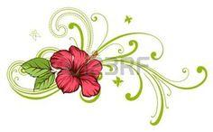 fiore di ibisco: Fiore tropicale