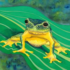 Tree Frog Green and Yellow Amphibian Limited Edition Print Watercolour Painting.