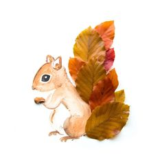 Cheeky Squirrel A curious squirrel with a fluffy tail made of brown copper beech leaves. This cheeky little one definitely complements an earth toned room. Specifications Illustrated art print from an original watercolor painting.