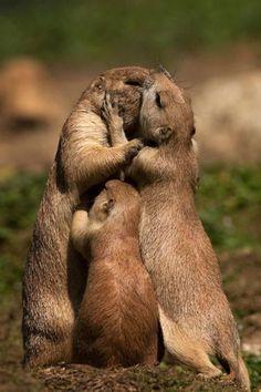 Che Amore!!