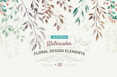Watercolor design elements by BON-design on Creative Market