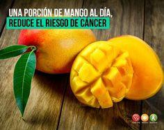 Una porción de mango al día  reduce el riesgo de cáncer.