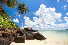stunning-beach-seychelles-17935720.jpg (400×267)