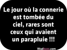 Le jour ou la connerie est tombée du ciel, - Best of Pins! Words Quotes, Sayings, Sky Quotes, Rage, Quote Citation, French Quotes, Sweet Words, Positive Attitude, Cool Words