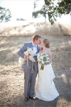 Napa Valley wedding, Barn wedding, erin jean photography, dog ring bearer