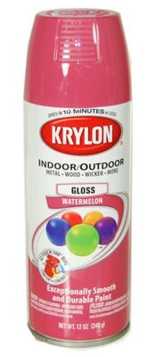 Krylon Obsession On Pinterest Krylon Spray Paint Krylon Looking Glass And Mercury Glass