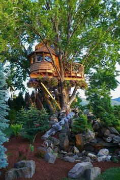 Awesome Tree House.... - Jenny Ioveva - Google+