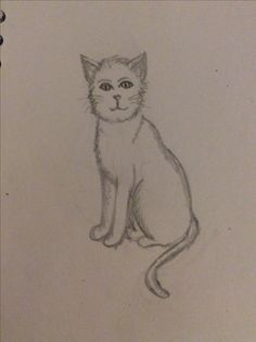 I'm not good at drawing cats so I decided to draw one 😄