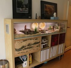 New Free of Charge Reptile Terrarium shelves Strategies It is obvious of which using a animal should bring untold enjoyment to someone else's life. Reptile Room, Reptile Cage, Reptile Enclosure, Chameleon Enclosure, Tortoise Enclosure, Tortoise Terrarium, Reptile Terrarium, Hamster Habitat, Hamster Cages