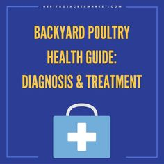 Backyard Poultry Health Guide: Diagnosis & Treatment