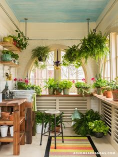 Potting room love!