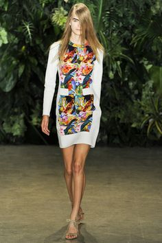 Altuzarra Print Dress