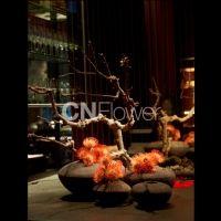 CNFlower 克麗比努爾花藝設計 服務項目