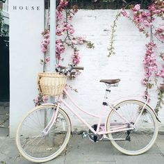 Pretty pink blossom and pink bike - perfect for a spring day. Vintage Clipart, Vintage Art, Vintage Dior, Vintage Stuff, Vintage Love, Watercolor Flower, Spring Aesthetic, Aesthetic Japan, Aesthetic Plants