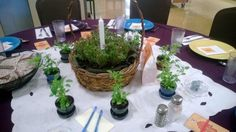 Organic Valley's Annual Earth Dinner! A time to eat deliciously organic, local food and talk about where it comes from!