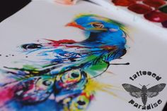 peacock watercolor by dopeindulgence