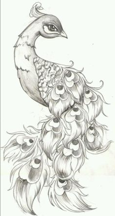 Just the head, I would like more realistic & whispy feathers!! Amber's Tattoo ideas