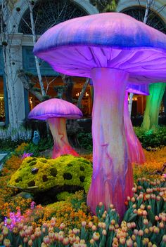 Green frog with magic mushrooms - The Bellagio Conservatory Botanical Gardens Spring 2010  (Is this a REAL mushroom?) ツ