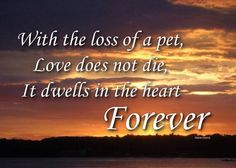 ♥ With the loss of a pet, Love does not die, it dwells in the heart FOREVER ♥