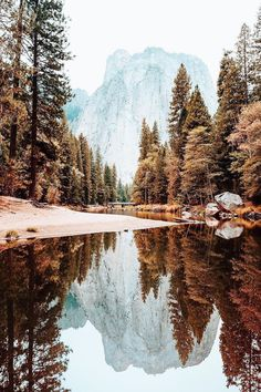 The 33 Most Beautiful Places In America Before You Die + Budget Travel Portofolio Fotografi Pemandangan Alam – Yosemite-Nationalpark Landscape Photography, Travel Photography, Adventure Photography, Photography Tips, Autumn Photography, Photography Lighting, Scenery Photography, Photography Camera, Photography Business