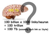 Логика сознания. Часть 4. Секрет памяти мозга    Когда с нами что-то происходит наш мозг фиксирует это, создавая воспоминания. Изменения, которые при этом происходят с мозгом, принято называть энграммами или следами памяти.    Вполне естественно, что понимание того, как выглядят следы памяти – основной вопрос изучения мозга. Без этого невозможно построить никакую биологически достоверную модель его работы. Понимание строения памяти непосредственно связано с пониманием того, как мозг кодирует…