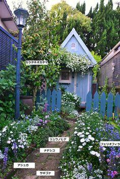 Garden Design, House Design, Shade Garden, Garden Inspiration, Garden Landscaping, Cottage, Backyard, Shades, Outdoor Structures