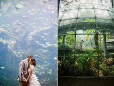 married at the california academy of science
