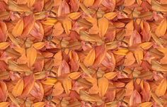 Australian_Autumn_Leaves.  - 12 quilting, apparel and upholstery fabrics. Including silks, organic cottons and a linen blend. Non-toxic inks, eco-friendly printing. Swatches $5, 20% off 20+ yards. Instant preview, look before you buy!